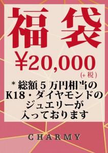 2018福袋(20,000)
